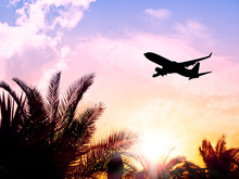 Airplane Flying Over Tropical Palm Tree And Sunrise Sky