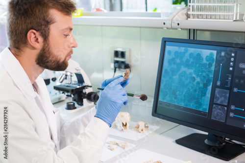 Photo Archaeologist working in natural research lab
