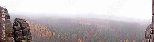 Fotografie, Tablou paisaje boscoso