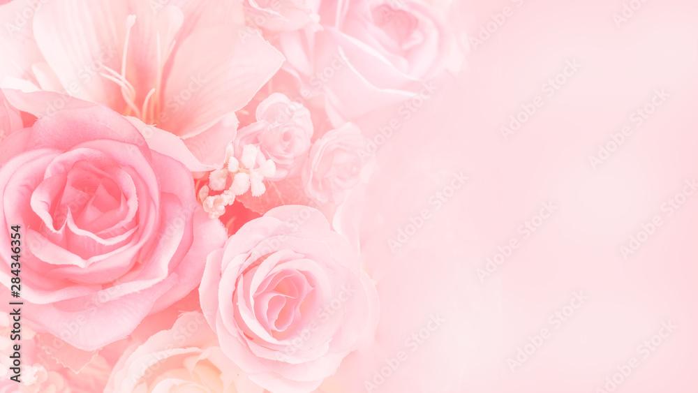 Fototapety, obrazy: Rose flowers