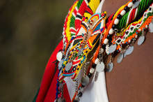 Kenya, Laikipia, Il Ngwesi, Masai Man Wearing Traditional Clothes And Adorned With Elaborate Beadwork Jewelry