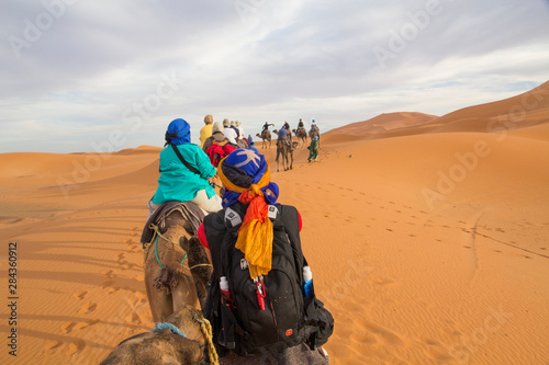 Africa, Morocco, Tafilalt, Erfoud, Merzouga, Erg Chebbi, Dromedary (Camelus dromedarius) camels and caravan with tourists being led through desert, on the Erg Chebbi Dunes (up to 400 feet in height) Fototapet