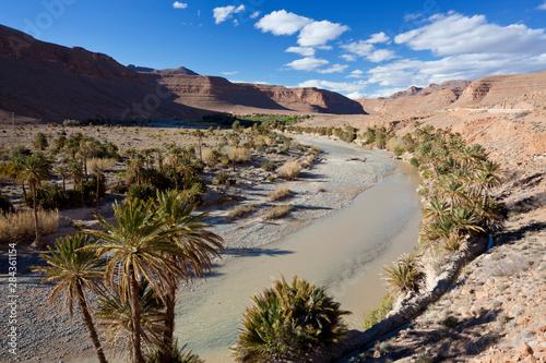 River and desert, near Erfoud, Meknes-Tafilalet, Morocco Canvas Print