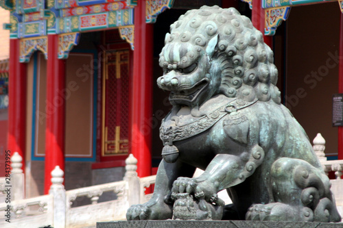 Photo sur Aluminium Commemoratif Asia, China, Beijing. Fu Dog statue at Forbidden Palace