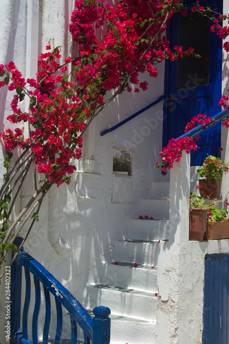 Greece, Mykonos, Hora. White staircase and blue railing with hanging bougainvillea.