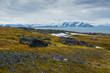 Norway. Svalbard. Bellsund. Varsolbukta. Camp Millar. Rocky ground and the sound beyond.