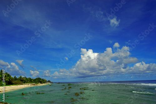 Fotografia Sea, rocks, palm trees and beach at low tide