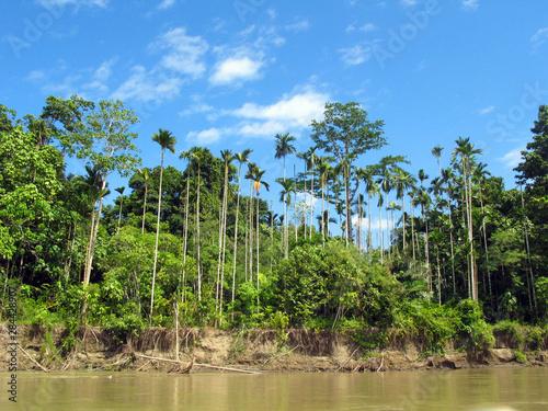 Photo  Papua New Guinea, Morobe Province