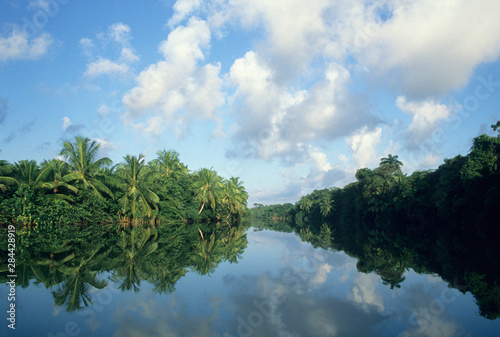 Near mouth of Sibun River, coastal Belize. Canvas Print