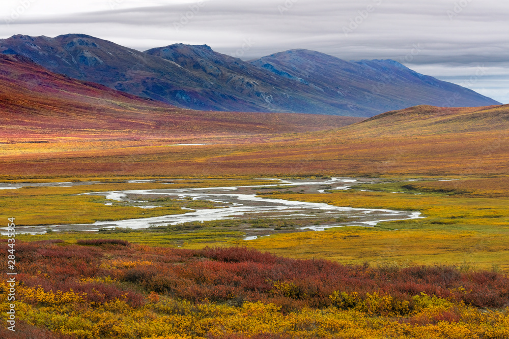 USA, Alaska, Brooks Range. Tundra in fall color. Credit as: Don Paulson / Jaynes Gallery / DanitaDelimont.com