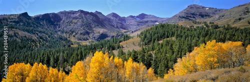 Stampa su Tela USA, California, Sonora Pass