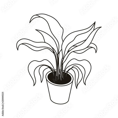 Fototapeta silhouette of houseplant with potted on white background obraz na płótnie