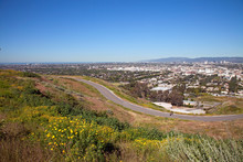 Spring Wildflowers Dot The Landscape At Baldwin Hills Scenic Overlook State Park, Culver City, Los Angeles, California, USA.