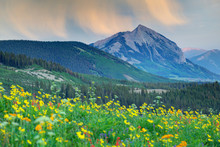 USA, Colorado, Crested Butte. ...