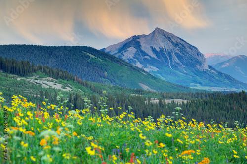 Fotografie, Obraz USA, Colorado, Crested Butte