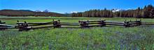 USA, Idaho, Sawtooth NRA. A Sp...