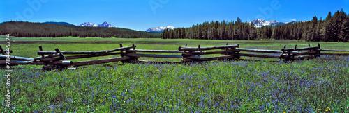 Foto op Plexiglas Weide, Moeras USA, Idaho, Sawtooth NRA. A split-rail fence divides a wildflower meadow in Sawtooth NRA, Idaho.