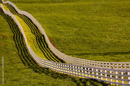 Vászonkép White wooden fences running across horse farm at sunset, Calumet horse farm, Lex