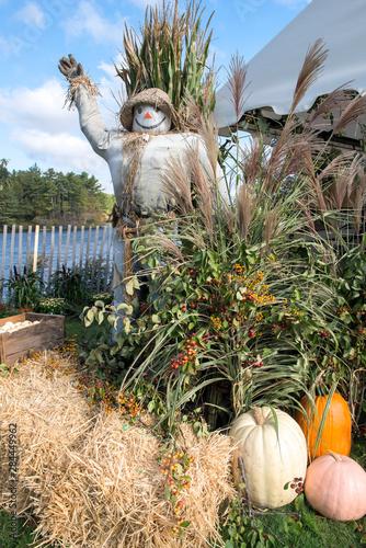 Vászonkép USA, Massachusetts, Wareham, scarecrow and fall display