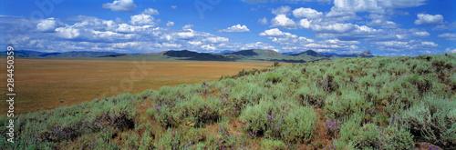 Photo USA, Idaho, Camas Co