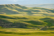USA, Montana, Rocky Mountain Front. Green Hills East Of Great Falls.