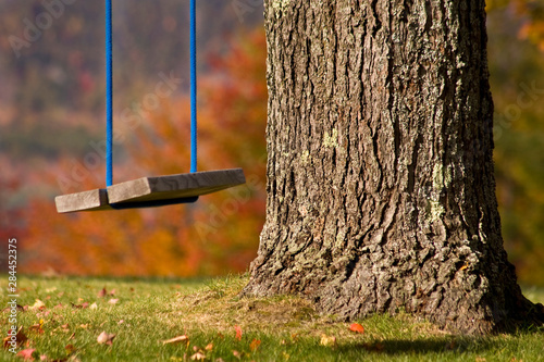 USA, Maine, Bethel. Close-up of a wooden swing hangs from a tree. Canvas Print