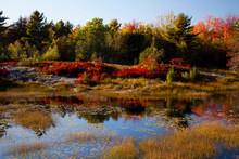 USA, Acadia National Park, Mai...