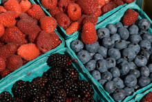 US: Oregon, Columbia River Basin, Portland, Farmers' Market Outside The EcoTrust Building, Blueberries, Raspberries, Blackberries