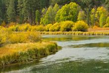 Early Autumn, Aspen Area, Deschutes River, Deschutes National Forest, Oregon, USA