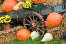 USA, Tennessee, Townsend. Wooden Wagon And Halloween Display. Credit As: Jim Zuckerman / Jaynes Gallery / DanitaDelimont.com