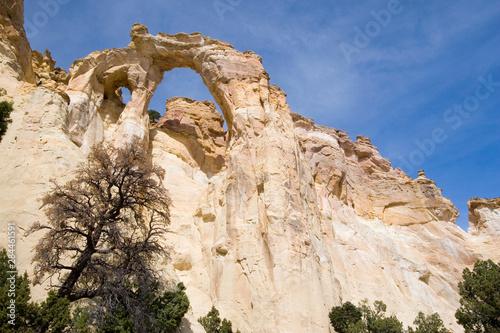 Slika na platnu USA - Utah