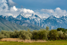View Of Wasatch Mountains From...