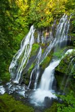 Panther Creek Falls, Gifford-Pinchot National Forest, Carson, Washington, USA.