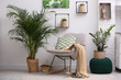 canvas print picture - Stylish modern room interior with exotic houseplants