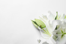 Beautiful Lilies On White Background, Top View