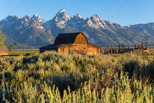 Cuadros en Lienzo John Moulton historic barn, Mormon Row, Grand Teton National Park, Wyoming, USA