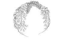 Digital Illustration Of Wisteria Flower, Black And White.