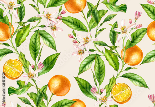 Orange fruit branches. Seamless pattern with flowers realistic botanical floral illustration on light beige background hand painted