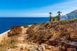 canvas print picture - Urlaub am Meer Sommer Mallorca Spanien Cala Mandia