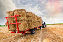 Collecting Straw Bales After T...