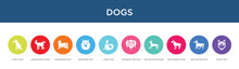 Dogs Concept 10 Colorful Icons