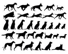 Silhouette Of Cats And Dogs Set