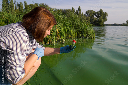 female ecologist takes samples of river water infected with green algae in tube Canvas-taulu