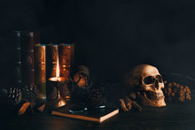 Still Life Vintage Of Human Skull With Books, Dried Flowers, Pine  Nut, Lamp, Note Book And Pen On Wooden Table In The Smoky Atmosphere Dark Room