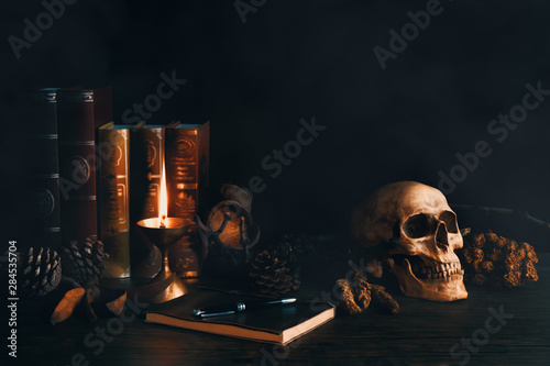 Fotografie, Tablou  still life vintage of human skull with books, dried flowers, pine  nut, lamp, no
