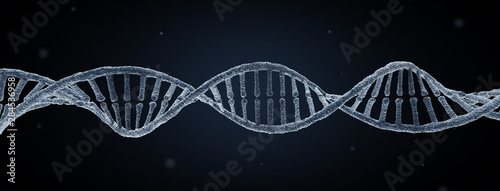 DNA molecule #284536958