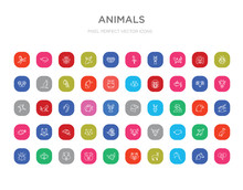 50 Animals Colorful Outline Icons Set. Can Be Use For Web Mobile