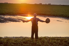 Farmer Standing Beside Pond In...