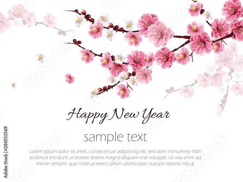 Fotografia Chinese plum flower background