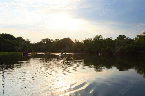 Fotografija  Panorama from Pantanal, Brazilian wetland region.